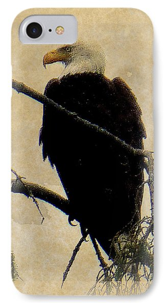 IPhone Case featuring the photograph Bald Eagle by Lori Seaman