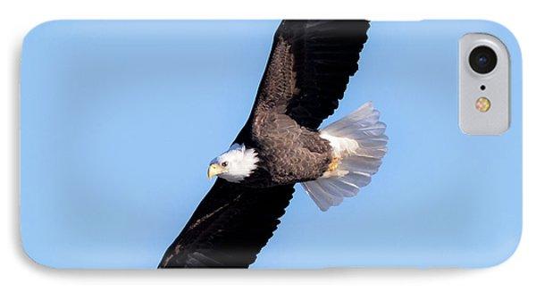 Bald Eagle Overhead  IPhone 7 Case