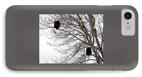 IPhone Case featuring the photograph Bald Eagle Pair by Will Borden