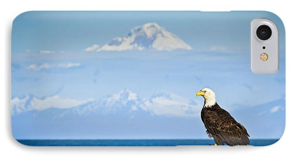 Bald Eagle Perched On A Rock IPhone Case