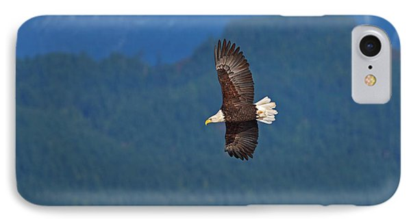 IPhone Case featuring the photograph Bald Eagle Soaring  by Sharon Talson