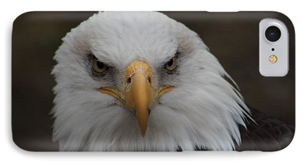 Bald Eagle Stare  IPhone Case