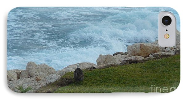 Bald Eagle Watching The Waves IPhone Case by Carole L Parker