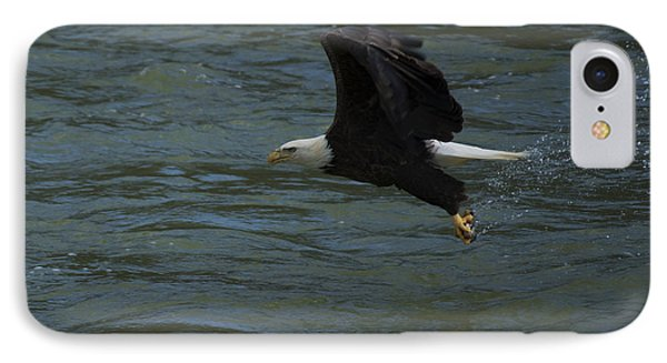 Bald Eagle With Fish In Claws Flying Over The French Broad River, Tennessee IPhone Case