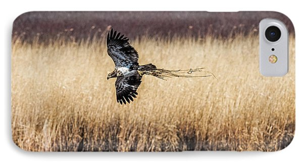 Bald Eagle With Nesting Material IPhone Case by Paul Freidlund