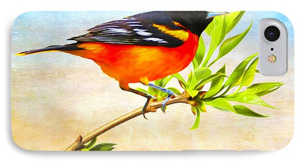 Oriole iPhone 7 Case - Baltimore Oriole Bird by Laura D Young