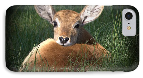 Bambi IPhone Case by Kim Henderson