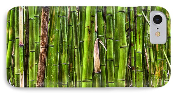 Bamboo IPhone Case by Dustin K Ryan
