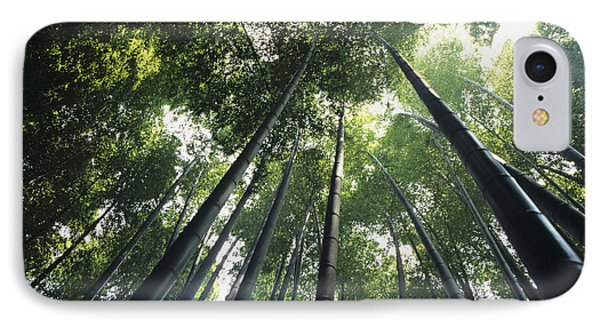 Bamboo Forest Phone Case by Mitch Warner - Printscapes