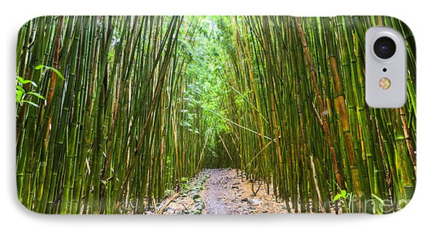 Bamboo Forest Trail Hana Maui 2 IPhone Case by Dustin K Ryan