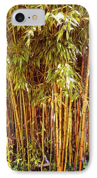 Bamboo Grove IPhone Case by Ann Johndro-Collins