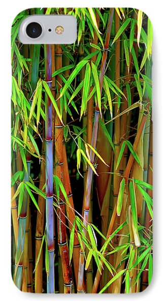 IPhone Case featuring the photograph Bamboo by Harry Spitz