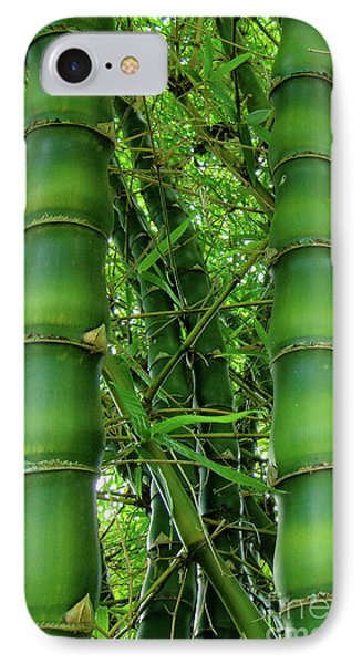 Bamboo IPhone Case by Loriannah Hespe