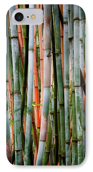 Bamboo Seduction II IPhone Case by Karen Wiles