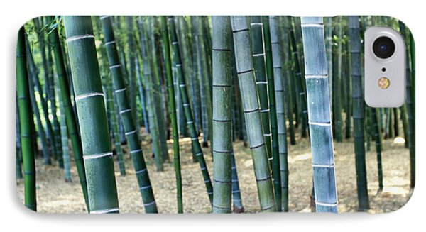 Bamboo Tree Forest, Close Up IPhone Case
