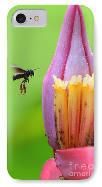 IPhone Case featuring the photograph Banana Pollinator   by Irina Hays