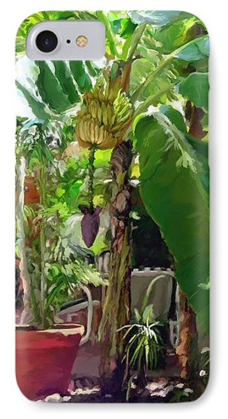 Banana Tree IPhone Case by David  Van Hulst