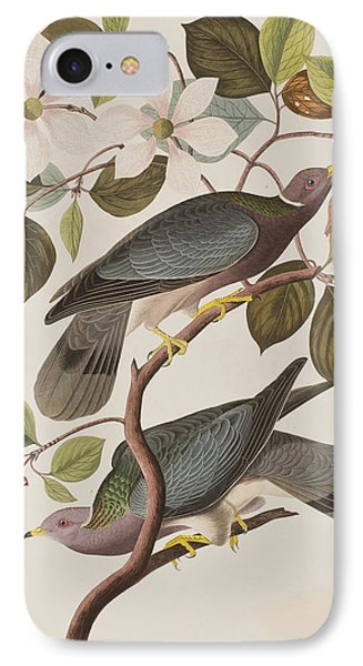 Band-tailed Pigeon  IPhone 7 Case by John James Audubon