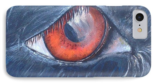 Eye Of The Bandit IPhone Case by T Fry-Green