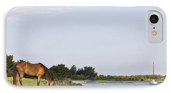 IPhone Case featuring the photograph Banker Horse Along Taylors Creek by Bob Decker