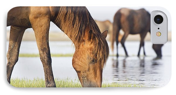 Banker Horses On Tidal Flat IPhone Case by Bob Decker