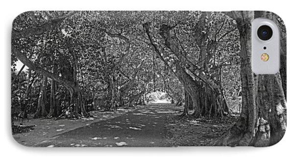 Banyan Street 2 IPhone Case