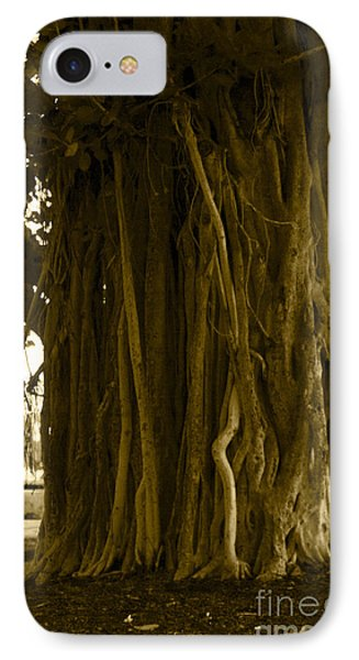 Banyan Surfer - Triptych  Part 1 Of 3 IPhone Case by Sean Davey