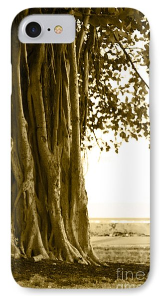 Banyan Surfer - Triptych  Part 2 Of 3 IPhone Case by Sean Davey