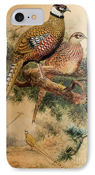 Bar-tailed Pheasant IPhone 7 Case