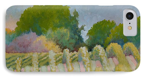 Barboursville Vineyards 1 IPhone Case by Catherine Twomey