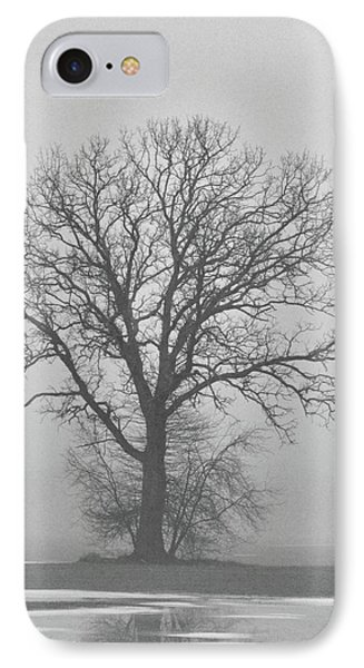Bare Tree In Fog IPhone Case