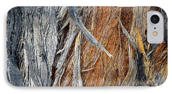 IPhone Case featuring the photograph Bark Of Palm by Lynda Lehmann