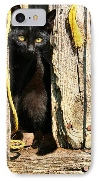 Barn Cat Phone Case by Kristin Elmquist