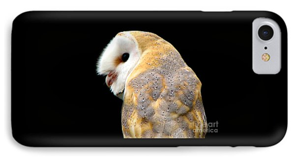 Barn Owl IPhone Case by Rose Santuci-Sofranko