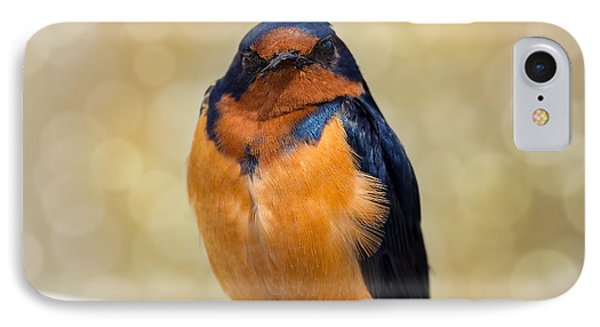 Barn Swallow Phone Case by David Gn