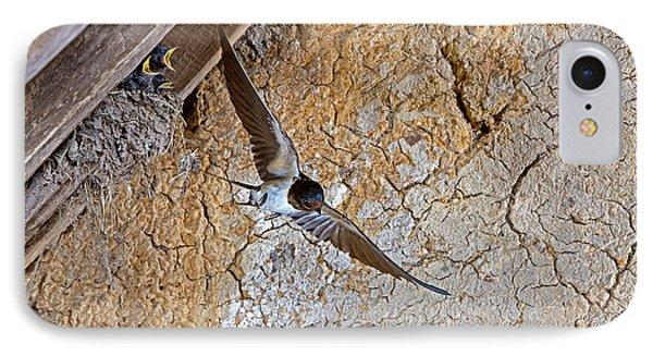 Barn Swallow Hirundo Rustica IPhone Case by Gerard Lacz