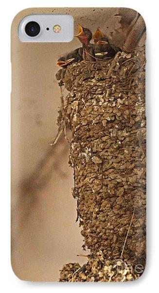 Barn Swallow Nest IPhone Case