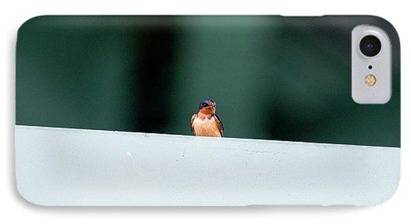 Barn Swallow Perch On Bridge Strut IPhone Case by Dan Friend