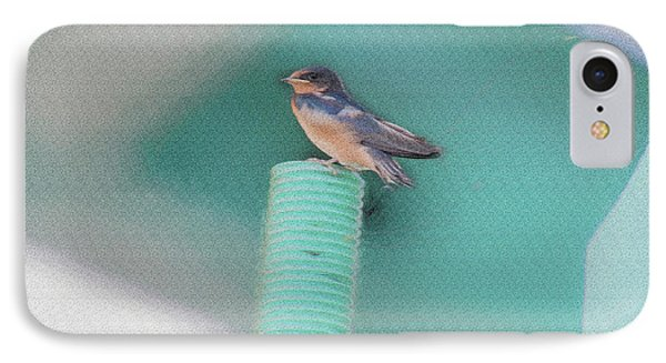 Barn Swallow Posing On Perch....paintography IPhone Case by Dan Friend