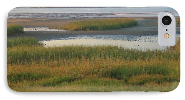 Barnstable Harbor Marsh Grasses And Sandy Neck Lighthouse IPhone Case by John Burk