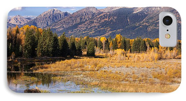Bull In The Beaver Ponds IPhone Case by Aaron Whittemore