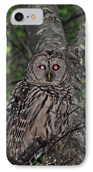 IPhone Case featuring the photograph Barred Owl 3 by Glenn Gordon