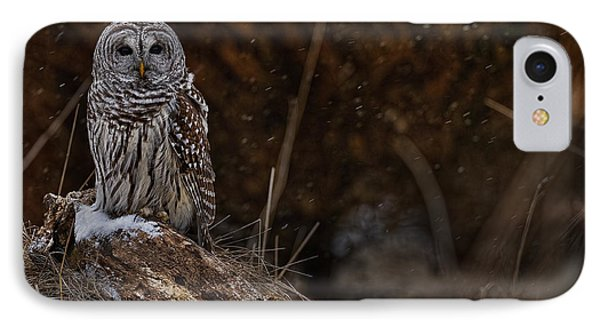 IPhone Case featuring the photograph Barred Owl On Log by Michael Cummings