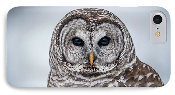 IPhone Case featuring the photograph Barred Owl by Paul Freidlund