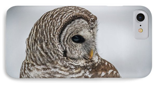 IPhone Case featuring the photograph Barred Owl Portrait by Paul Freidlund