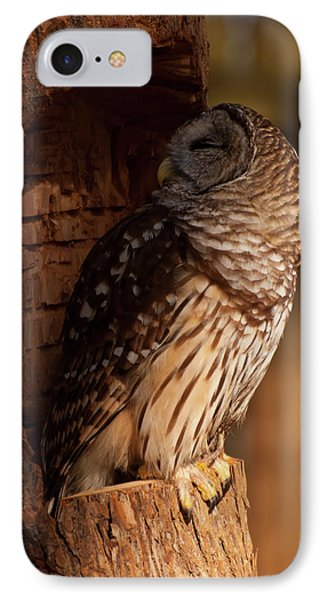 IPhone Case featuring the digital art Barred Owl Sleeping In A Tree by Chris Flees