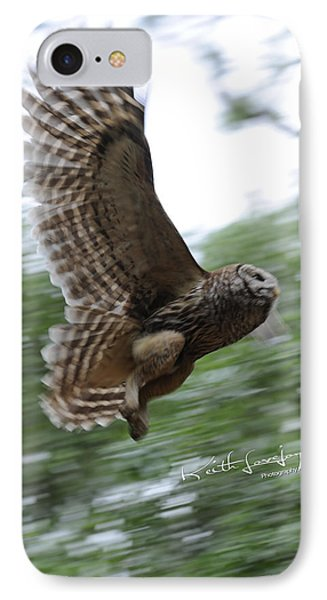 Barred Owl Taking Flight IPhone Case