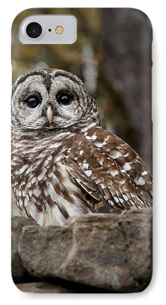 Barred Owl IPhone Case by Tyson and Kathy Smith