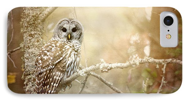 Barred Owl - Woodland Fellow IPhone Case by Beve Brown-Clark Photography