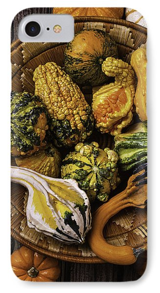 Basket Full Of Autumn Gourds IPhone Case by Garry Gay